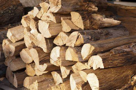 Enjoy winters in the Comfort of your Fireplaces with the best Firewood.
